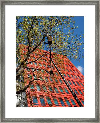 Framed Print featuring the photograph Formal Google by Stewart Marsden