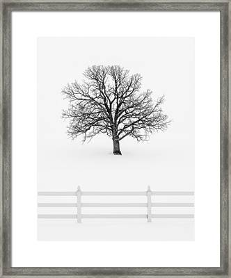 Forsaken Winter Framed Print by Todd Klassy