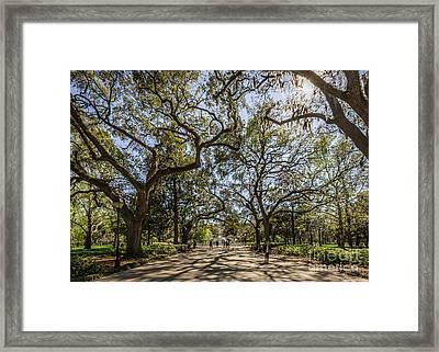Forsyth Park Framed Print by Joan McCool