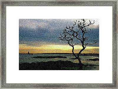 Fort Foster Tree Framed Print