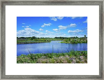 Fort Pierce Florida Savannah Framed Print by Liesl Marelli