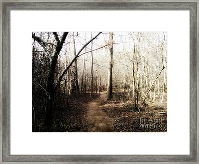 Framed Print featuring the photograph Fort Yargo Trail by Utopia Concepts