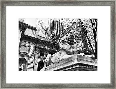Fortitude At The New York Public Library Mono Framed Print by John Rizzuto