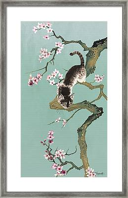 Fortune Cat In Cherry Tree Framed Print
