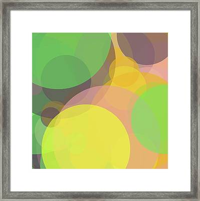 Forty -circle- -composition- Framed Print by Coded Images