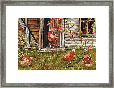 Fossicking Fowls Framed Print by Val Stokes
