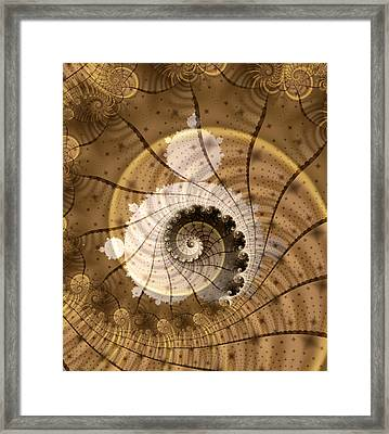 Fossil Framed Print by David April