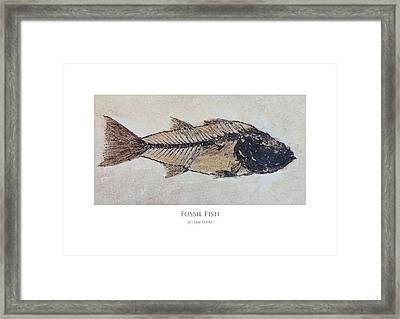 Framed Print featuring the digital art Fossil Fish by Julian Perry
