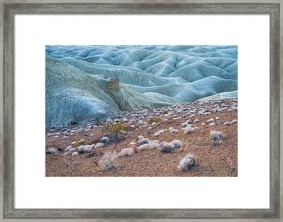 Fossil Reef And Mud Hills Framed Print