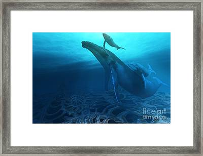 Fossils Framed Print by Corey Ford