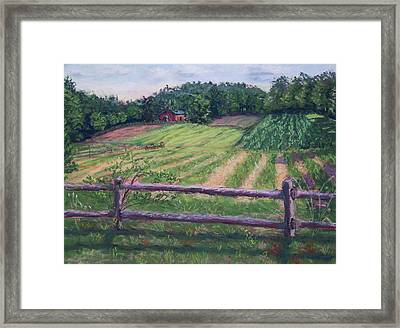 Fosterfields Farm Framed Print by Laurie Paci