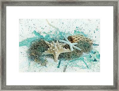 Found At Sea Beach Still Life Art Framed Print by Jai Johnson