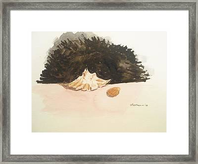 Found Framed Print by Robby  Entrekin