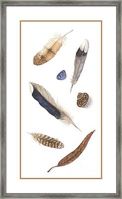Found Treasures Framed Print by Lucy Arnold