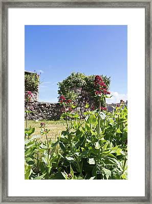 Foundry Flowers Framed Print