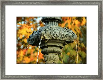 Framed Print featuring the photograph Fountain At Union Park by Chris Berry