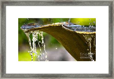 Fountain Bowl Framed Print