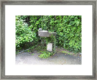 Fountain Of Life Framed Print