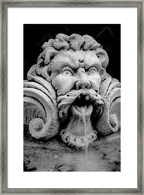 Fountain One  Bw Framed Print