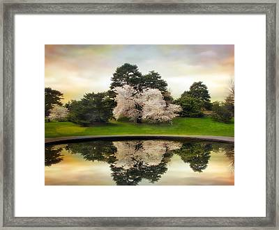 Fountain Reflections Framed Print