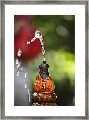 Fountain Tip Framed Print by John Knapko