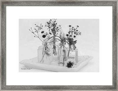 Four Bottles And Their Flowers Framed Print by Sandra Foster