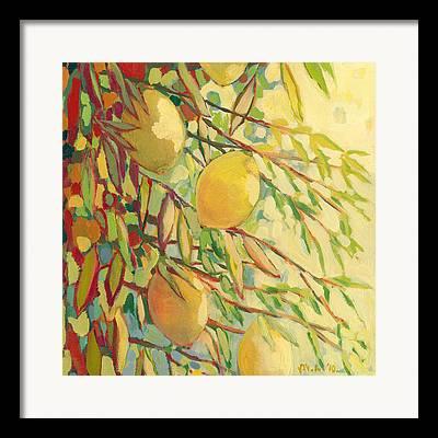 Lemon Lime Framed Prints