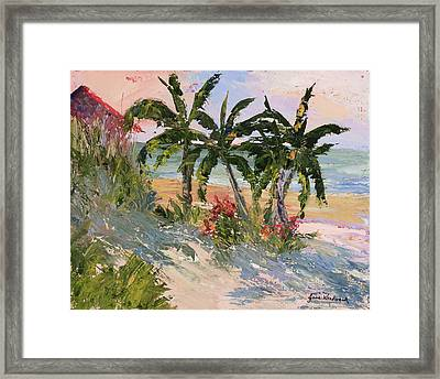 Four Palms Framed Print by Jane Woodward