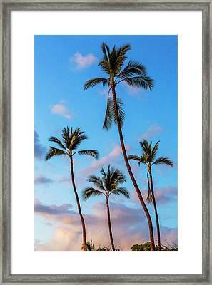 Four Palms Framed Print by Kelley King