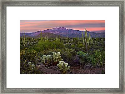 Four Peaks Sunset Framed Print by Dave Dilli