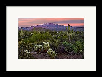 Phoenix Framed Prints