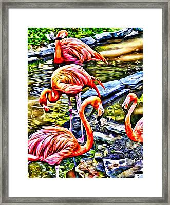 Four Pink Flamingos Framed Print