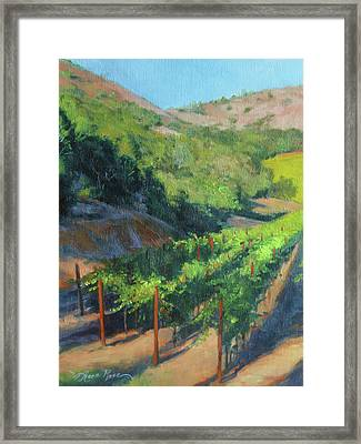 Four Rows Napa Valley Framed Print by Anna Rose Bain