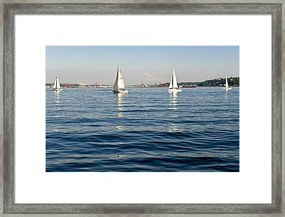 Four Sailboats Framed Print by Tom Dowd