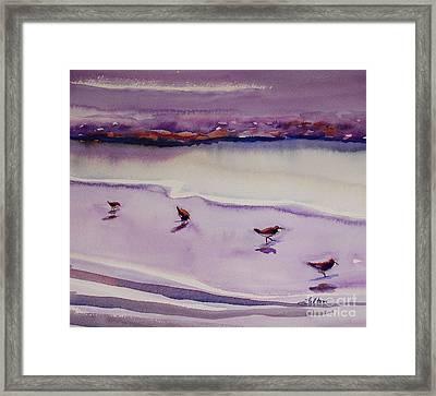 Four Sandpipers Framed Print by Julianne Felton