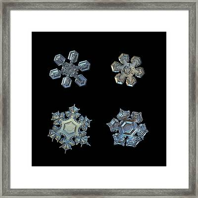Framed Print featuring the photograph Four Snowflakes On Black 2 by Alexey Kljatov