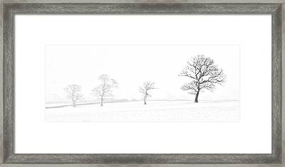 Four Trees Farndale Framed Print by Janet Burdon