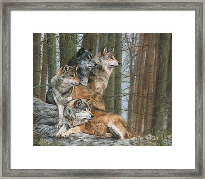 Framed Print featuring the painting Four Wolves by David Stribbling