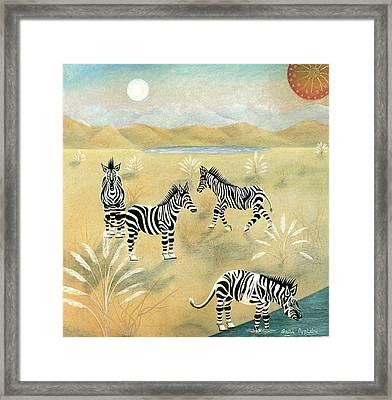 Four Zebras Framed Print by Sally Appleby