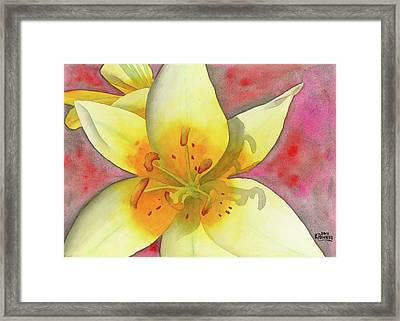 Fourth Of July Flower Framed Print by Ken Powers