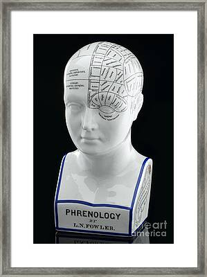 Fowlers Phrenological Head, 19th Century Framed Print by Wellcome Images