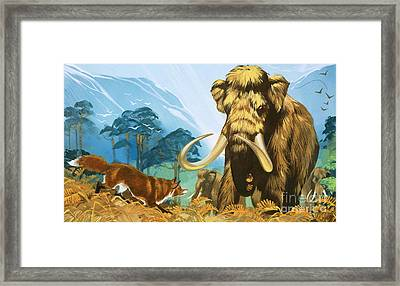 Fox Attacking Mammoth Framed Print by Angus McBride