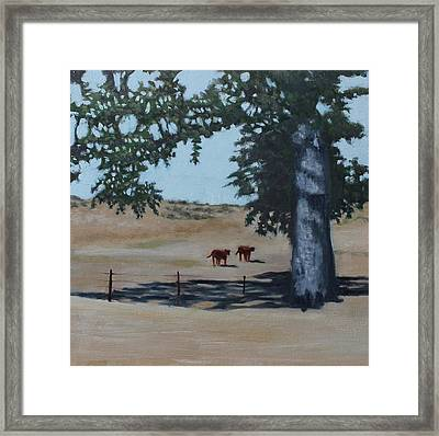 Fox Canyon Ranch Framed Print
