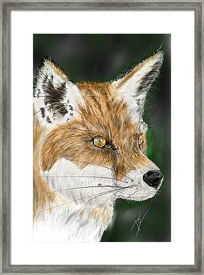 Framed Print featuring the digital art Fox by Darren Cannell