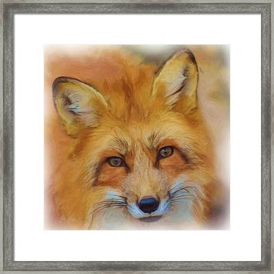 Fox Face Taken From Watercolour Painting Framed Print