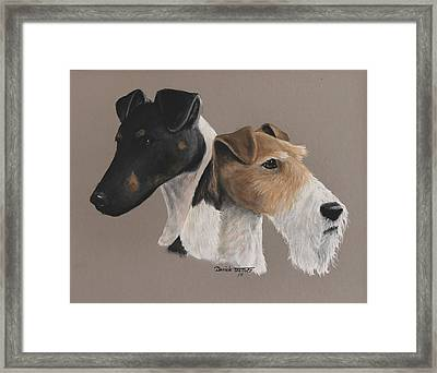 Fox Terrier Framed Print by Daniele Trottier