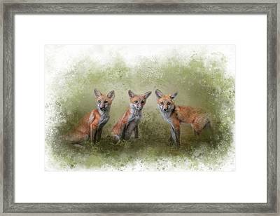 Fox Trio Watercolor Border Framed Print