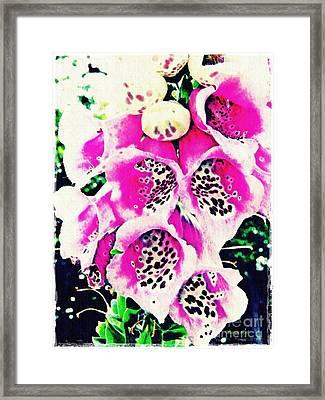 Foxglove 2 Framed Print by Sarah Loft