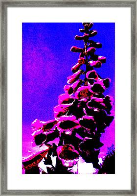 Framed Print featuring the painting Foxglove by Renate Nadi Wesley