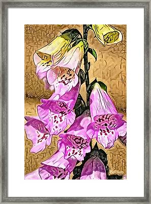 Foxglove Watercolor Framed Print by Bill Cannon